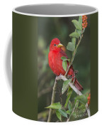 Summer Tanager Coffee Mug