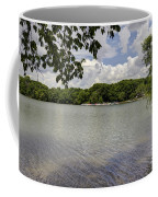 Summer Time At Moraine View State Park Coffee Mug