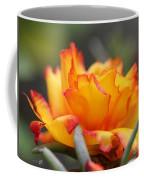 Sundial Portulaca Coffee Mug