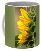 Sunflower From The Color Fashion Mix Coffee Mug