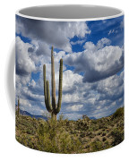 The Beauty Of The Desert Southwest Coffee Mug