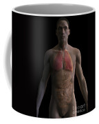 The Respiratory And Digestive Systems Coffee Mug