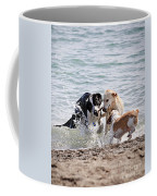 Three Dogs Playing On Beach Coffee Mug