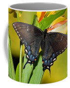 Tiger Swallowtail Butterfly, Dark Phase Coffee Mug