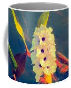 Transpantaneira Coffee Mug