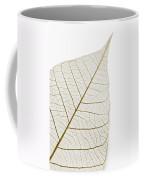Transparent Leaf Coffee Mug