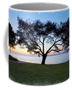 Tree By The Bay Coffee Mug
