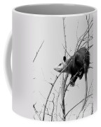 Treed Opossum Coffee Mug