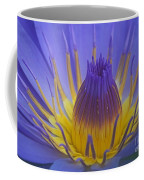 Tropic Water Lily 16 Coffee Mug