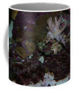 Tropical Coral Coffee Mug