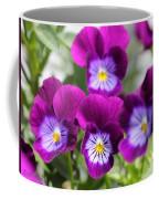 Viola Named Sorbet Plum Velvet Jump-up Coffee Mug