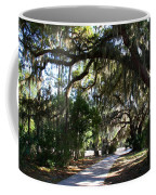 Walking Path Coffee Mug