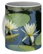2 Waterlilys Rising Above The Water Coffee Mug
