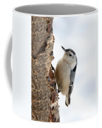 White-breasted Nuthatch Coffee Mug