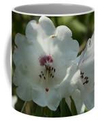 White Rhododendron Blossom Coffee Mug