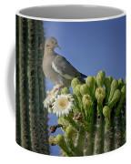 White-winged Dove Atop A Saguaro Coffee Mug
