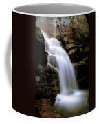 Wildcat Falls Coffee Mug