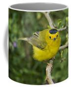 Wilsons Warbler Coffee Mug