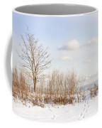 Winter Shore Of Lake Ontario Coffee Mug by Elena Elisseeva