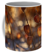 Winter's Light Coffee Mug