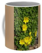 Yellow Ice Plant In Bloom Coffee Mug