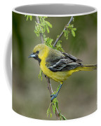 Young Orchard Oriole Coffee Mug