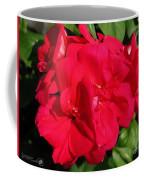 Zonal Geranium Named Candy Cherry Coffee Mug