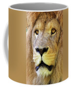 Lion Dafrique Panthera Leo Coffee Mug