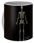 The Skeleton Coffee Mug