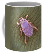 Tick Ixodes Coffee Mug