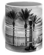 2014 11 11 01 B Bw Destin Pm 0306 Coffee Mug