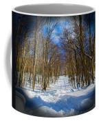 2015 02 22 02 B 8 2106 Coffee Mug