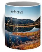 21042 Perfection 2 Coffee Mug