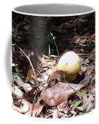 Australia - One Bush Mushroom Coffee Mug