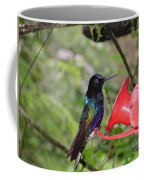 Scenes From Ecuador Coffee Mug