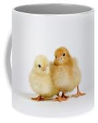 Poussin Coffee Mug