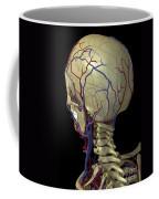 The Cardiovascular System Coffee Mug