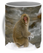 Japanese Macaque Coffee Mug