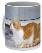 Cat In Hydra Island Coffee Mug