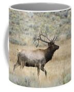 2nd To None Coffee Mug