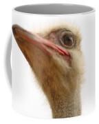Ostrich Closeup Coffee Mug