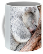 Adorable Koala Bear Taking A Nap Sleeping On A Tree Coffee Mug