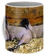 3 Animals Coffee Mug