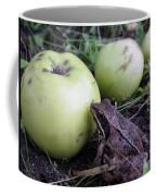 3 Apples And A Frog Coffee Mug