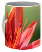 Asiatic Lily Named Red Twin Coffee Mug