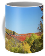 Autumn Colors In Maine Blueberry Field And Forest Coffee Mug