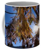 Autumn Coniferous Coffee Mug