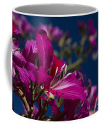 Bauhinia Purpurea - Hawaiian Orchid Tree Coffee Mug