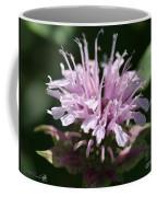 Bee Balm From The Panorama Mix Coffee Mug