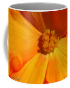 Begonia Named Nonstop Apricot Coffee Mug